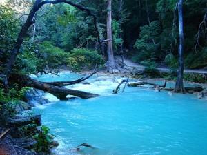 cascadas de agua en chiapas
